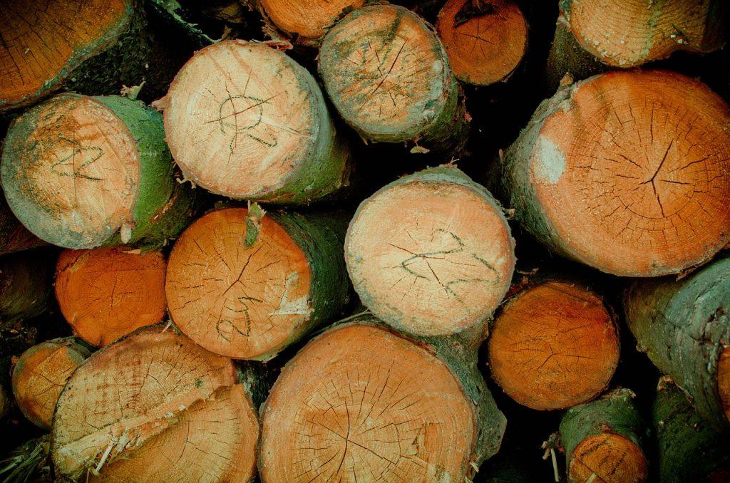 יש סוגי עצים מסוימים מהם ניתן ונכון לייצר פרקטים
